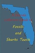 florida fossil identification chart