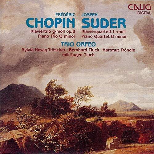 Trio Orfeo, Sylvia Hewig-Tröscher, Bernhard Tluck, Hartmut Tröndle & Eugen Tluck