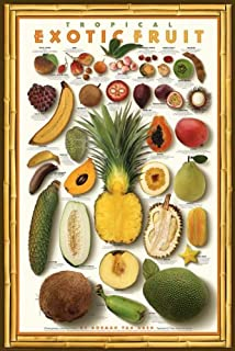 Best papaya pictures to print Reviews