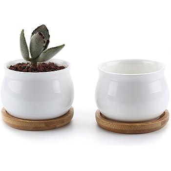 T4U 7cm 植木鉢 多肉植物鉢 サボテン鉢 陶器鉢 プランター 容器 底穴付き 竹トレー付き 2個入り 白