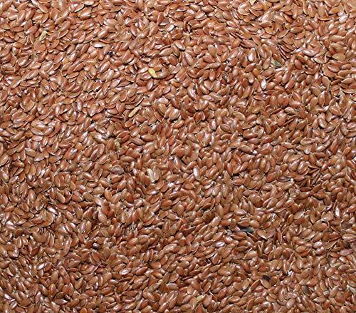 10 kg Leinsaat Lausitzer Leinsamen vorgereinigt ohne Zusatzstoffe kostenloser Versand