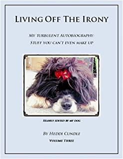 Living Off The Irony: My Turbulent Autobiography (Living Off The Irony Book 3)
