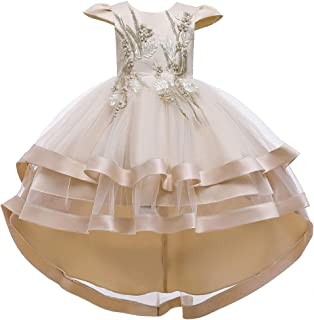 Girl Ruffled Dress Carved Embroidery Beauty Pageant Wedding Dress Girls Trailing Skirt Prom Cocktail Dress Show Princess Gift