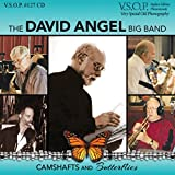 The David Angel Big Band: Camshafts and Butterflies...