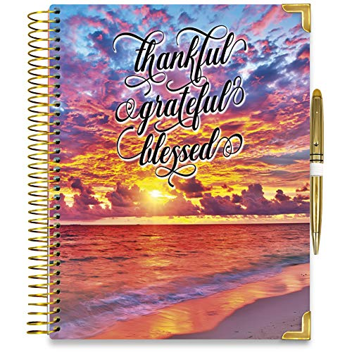 Tools4Wisdom Daily 2021 Planner Pro - Dated December 2020 to Dec 2021 Calendar Year w/Vertical Weekly Planner Layout, Monthly Planner Tabs, and Stickers (8.5 x 11 Hardcover with Pen, Full Color, Q4G)