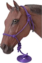 Tough 1 Pack Miniature Poly Rope Halters with Leads,