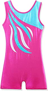 BAOHULU Leotard for Girls Gymnastics Toddler Sparkle Embroidery Tank Biketards One Piece