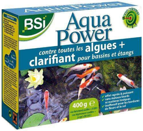 BSI 16990 Aqua Power 400 Gr anti-algue/clarifiant pour bassins/étangs