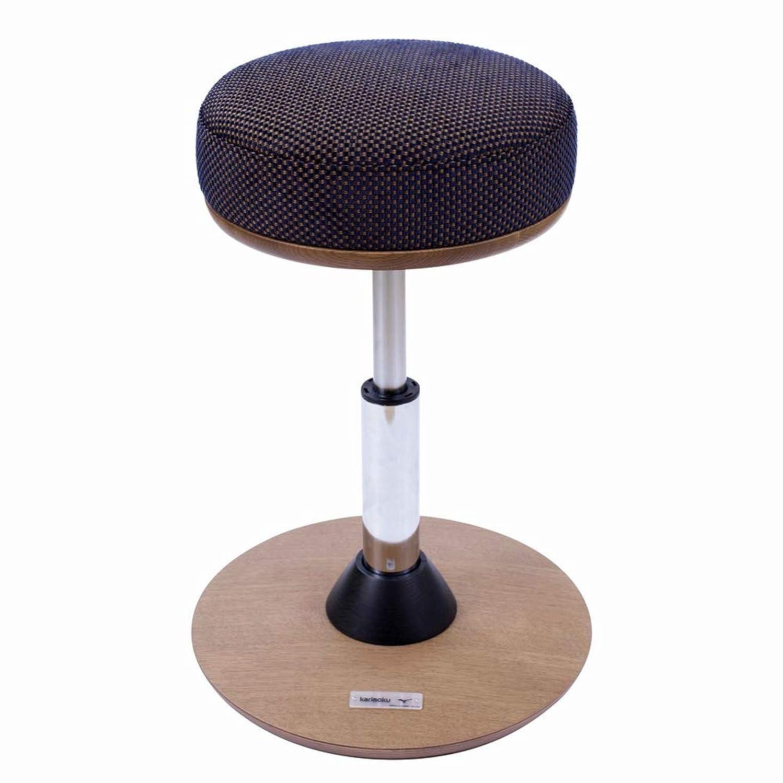 散歩に行く金属相関するMIZUNO(ミズノ) 健康用具 トレーニング椅子 スクワットアーブル C3JHI80312 ダークネイビー