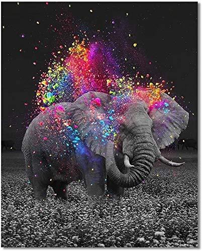SULISO DIY Pintura por Números para Adultos Principiantes Pintar por Numeros Kit 40 cm x 50 cm Pulgadas Decoraciones para el Hogar - Señor elefante(con Marco de Madera)