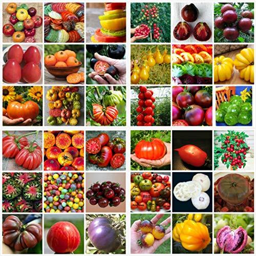 Portal Cool 200Pcs Rare Mixed Tomatensamen Gemüse, Obst, Samen Hausgarten Ziertopf