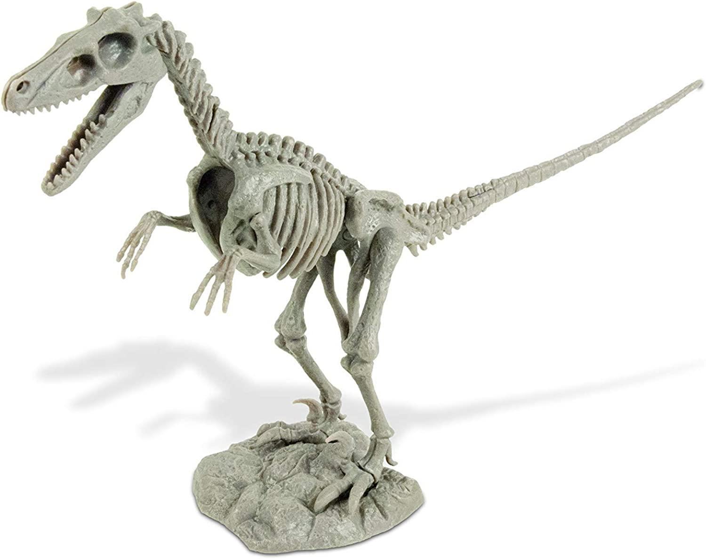 Uncle Milton Dr. Steve Hunters Dino Dig Excavation Kit VelociraptorScientific Educational Toy