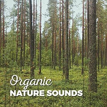 Organic Nature Sounds
