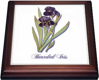 3dRose trv_171212_1 Bearded Iris, Botanical Print of Dark Purple Flowers with Orange Trivet with Ceramic Tile, 8