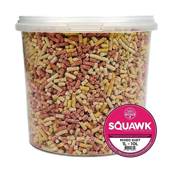 SQUAWK Mixed Suet Pellets | Garden Wild Bird Food Mix | Balanced and Healthy Feed Mixture | Nutritious Insect, Berry & Mealworm Pellet | Contains Essential High Energy Vitamins and Minerals