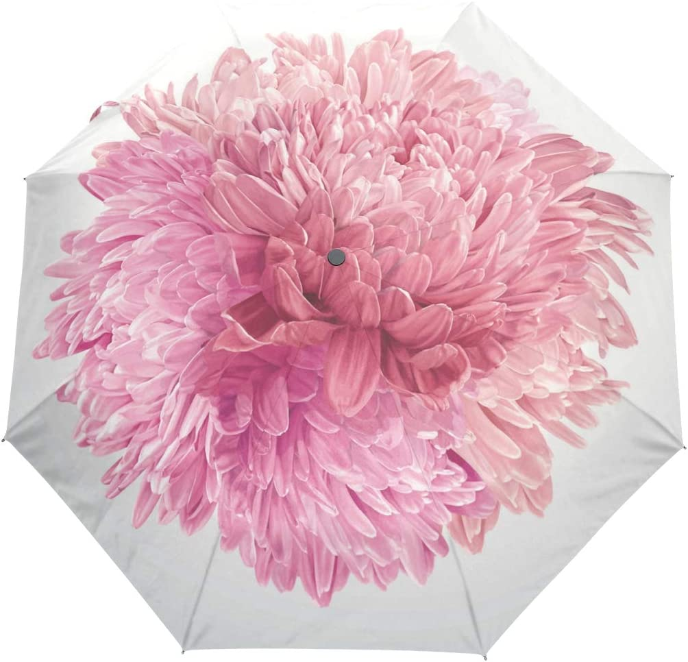 Mr.XZY Pink Flowers Windproof Automatic Folding Travel Umbrella For Kids Chrysanthemum Compact Auto Open and Close Umbrella Waterproof 2010018