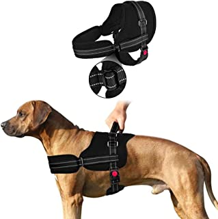 SlowTon No Pull Dog Vest Harness Adjustable Neck Chest Strap Breathable Padded Vest (M, Black)
