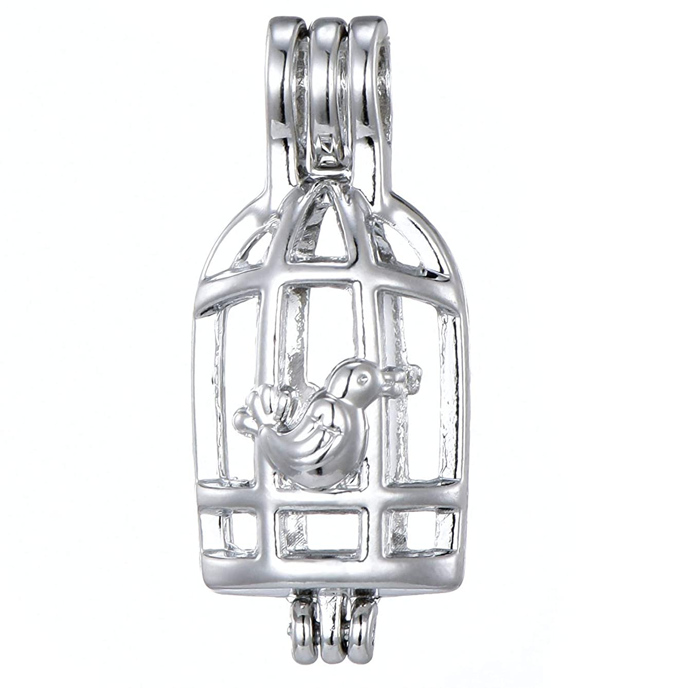 10pcs Birdcage Stainless Steel Tones Alloy Bead Cage Pendant Add Your Own Pearls Stones Perfume Essential Oils to Create a Scent Diffusing Locket Pendant Charms (A427)