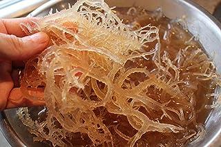 Organic SEA Moss (RAW) 1 LB - Irish Moss DR SEBI NDQ