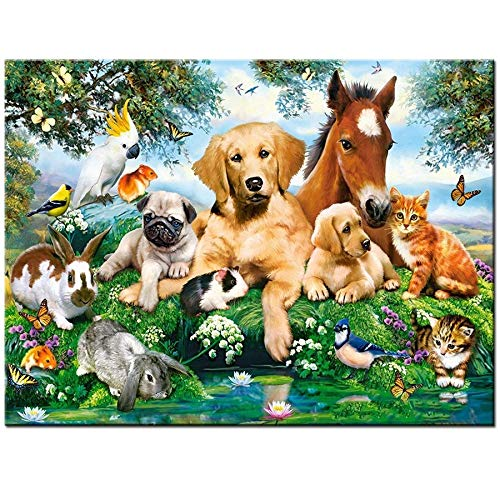 Loderqu 5D Diamond Embroidery Horse Dog Cat Parrot Birds Diamond Painting Full Square Round Rhinestones Painting Diamond Mosaic Puzzle Handmade cross stitch (Size : Round drill 30x40cm)