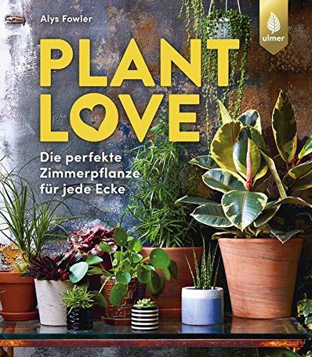 Plant Love: Die perfekte Zimmerpflanze für jede Ecke