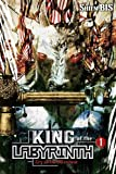 King of the Labyrinth, Vol. 1 (light novel): Cry of the Minotaur (King of the Labyrinth (light novel), 1)