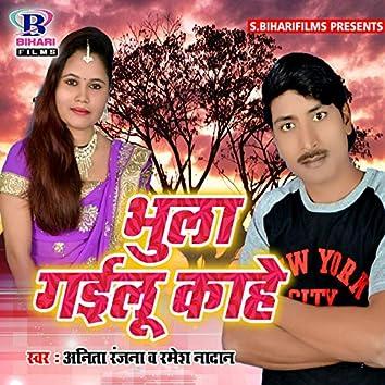 Bhula Gailu Kahe - Single