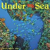 Under the Sea 2020 Wall Calendar