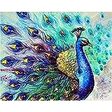 Pintura por números,Blue animal peacock Pintura por Números para Adultos Bricolaje Lienzo Preimpreso Pintura al óleo Arte Decoración del Hogar Reducir la Ansiedad,40cmX50cm(sin marco).