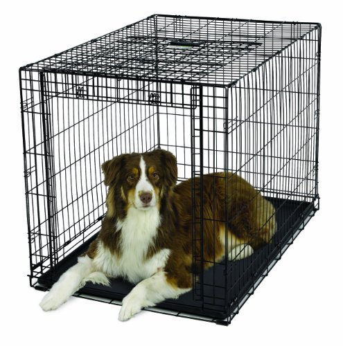 MidWest Homes for Pets Ovation Single Door Dog Crate 42Inch