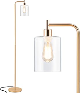 Tall LED Floor Lamp Included Bulb, Acaxin Modern Standing Lamp with Hanging Glass Shade, Gold Farmhouse Indoor Simple Floo...