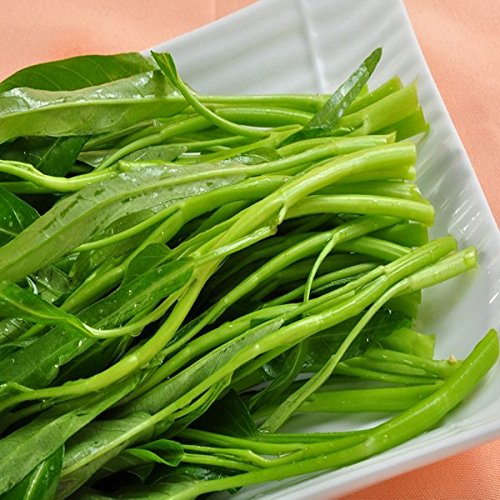 250pcs Delicious Vegetable Water Spinach Seeds Green Food Home Garden
