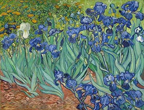 Wieco Art Irises Modern Stretched and Framed Floral Giclee Canvas Print by Van Gogh Famous Flowers Oil Paintings Reproduction Artwork Pictures on Canvas Wall Art for Bedroom Home Decorations