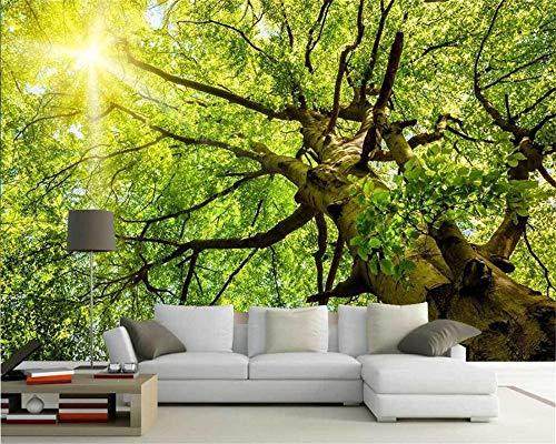 Fondos De Pantalla Sunshine Trees Lush Road 3D Paisaje Tv Fondo Pared Sala De Estar Dormitorio Mural 3D Fondos De Pantalla Foto,150Cmx105Cm