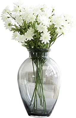Amazon Com Sx Zzj Vase Transparent Glass Creative Flower Arrangement Rich Bamboo Hydroponic Flower Decoration Glass Vase Home Kitchen