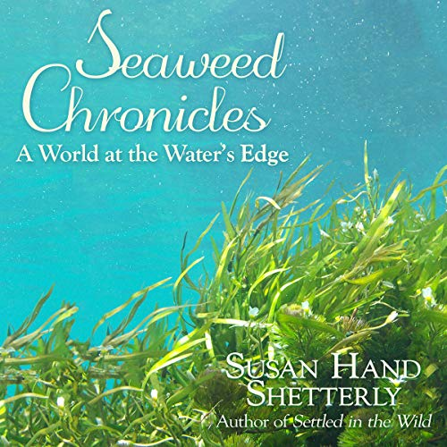 Seaweed Chronicles cover art
