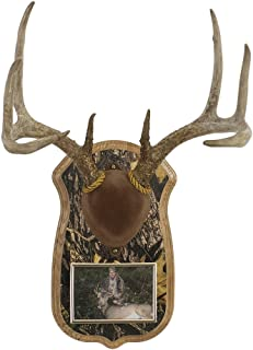 Walnut Hollow Country Deluxe Antler Display Kit with Photo Frame, Oak with Camo
