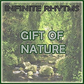Infinite Rhythms, Gift of Nature