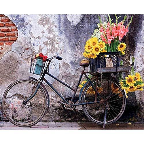 DIY pintura al óleo por números en lienzo bicicleta pintura sin marco por números paisaje pintura digital decoración del hogar A2 60x80cm