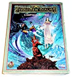 FORGOTTEN REALMS CAMPAIGN (Advanced Dungeons & Dragons, 2nd Edition)