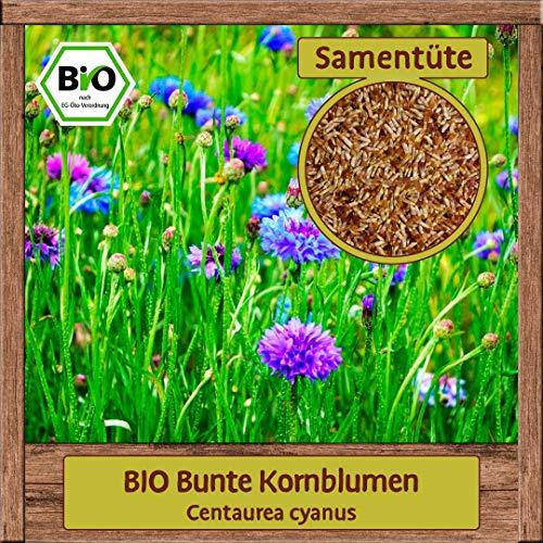 BIO Kornblume Samen mit essbaren Blüten in rosa, weiß, blau, violett Saatgut (Centaurea cyanus) Blumensamen Schnittblume Staude