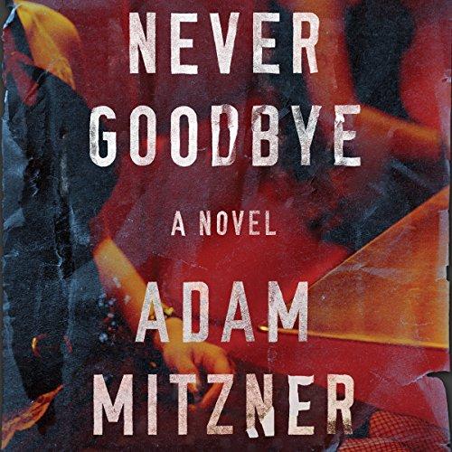 Never Goodbye audiobook cover art