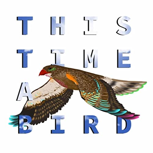 This Time a Bird