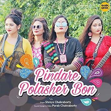 Pindare Polasher Bon