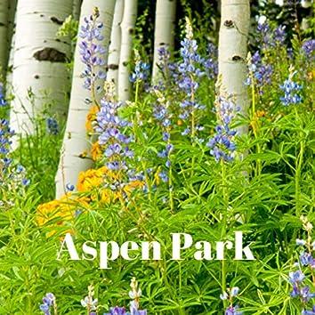 Aspen Park
