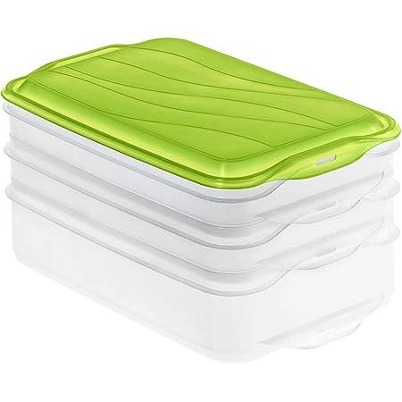 Rotho Rondo Boîte de Conservation en 3 Parties 2x 0,75L et 1x 1,35L avec Couvercle, Plastique (PP) sans BPA, Verte/Transparente, 2 x 0,75L + 1 x 1,35L (23,5 x 15,5 x 11,5 cm)