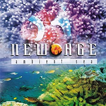 """New Age """"Ambient Sea"""""""