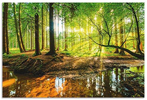 Artland Wandbild Alu für Innen & Outdoor Metall Bild 30x20 cm Landschaften Wald Fotografie Grün Wald mit Bach T9IO