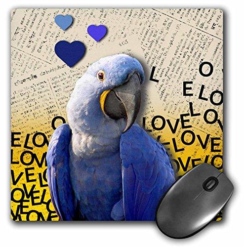 3D Rose mat Finish Muispad - 20,3 x 20,3 cm Blauwe araa/papegaai, zoete glimlach, vrolijk glimlachende vogel, marineblauw en geel, dierfotografie 8x 8 Inches roze