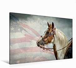 Premium - Lienzo de lienzo (120 x 80 cm, horizontal), diseño de calendario de Mecklemburgo salvaje Oeste, imagen sobre bastidor, imagen sobre lienzo: Paint (CALVENDO Tiere);CALVENDO Animales